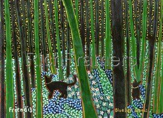 Bluebell Woods 2013